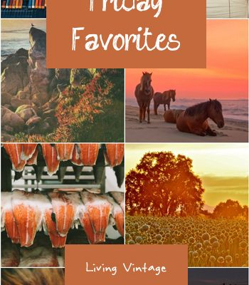 Friday Favorites #122