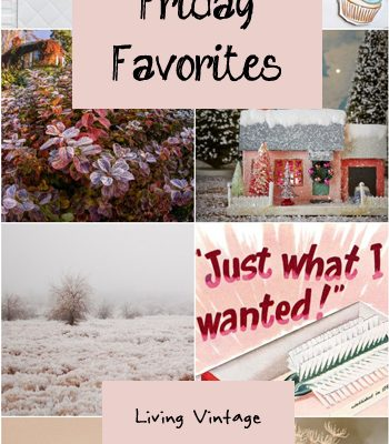 Friday Favorites #126