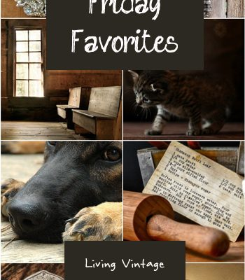 Friday Favorites #134