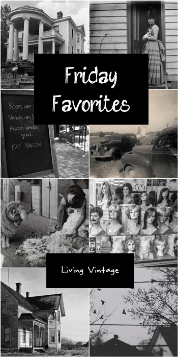 Friday Favorites 138 at Living Vintage. Hop on over and explore a bit!