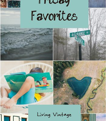 Friday Favorites #143