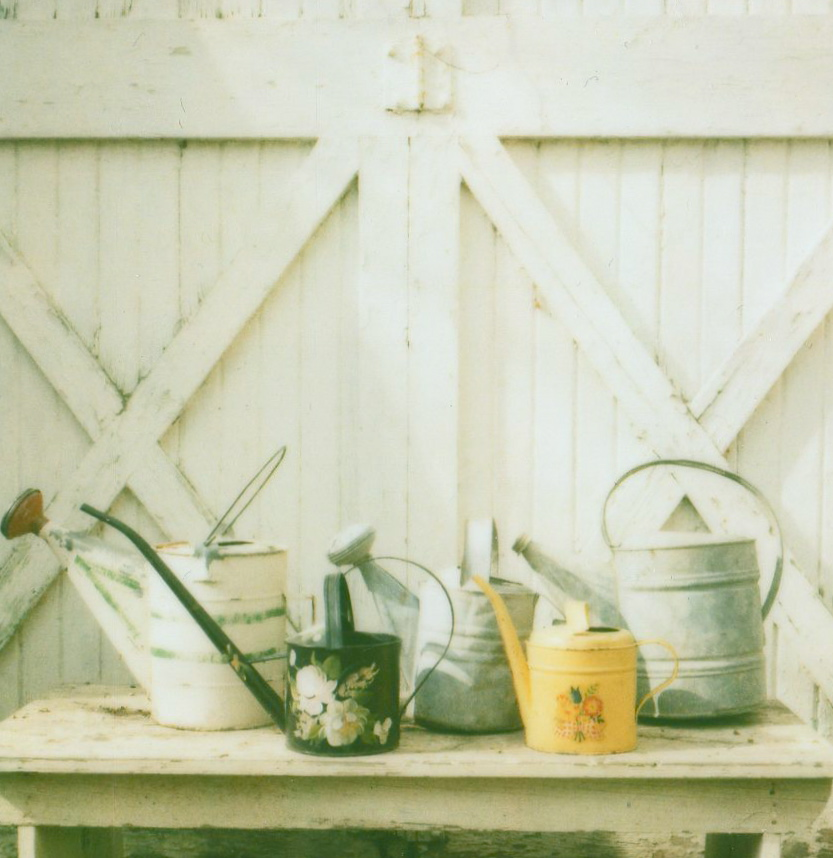 a nice collection of watering cans (and I love the barn doors)