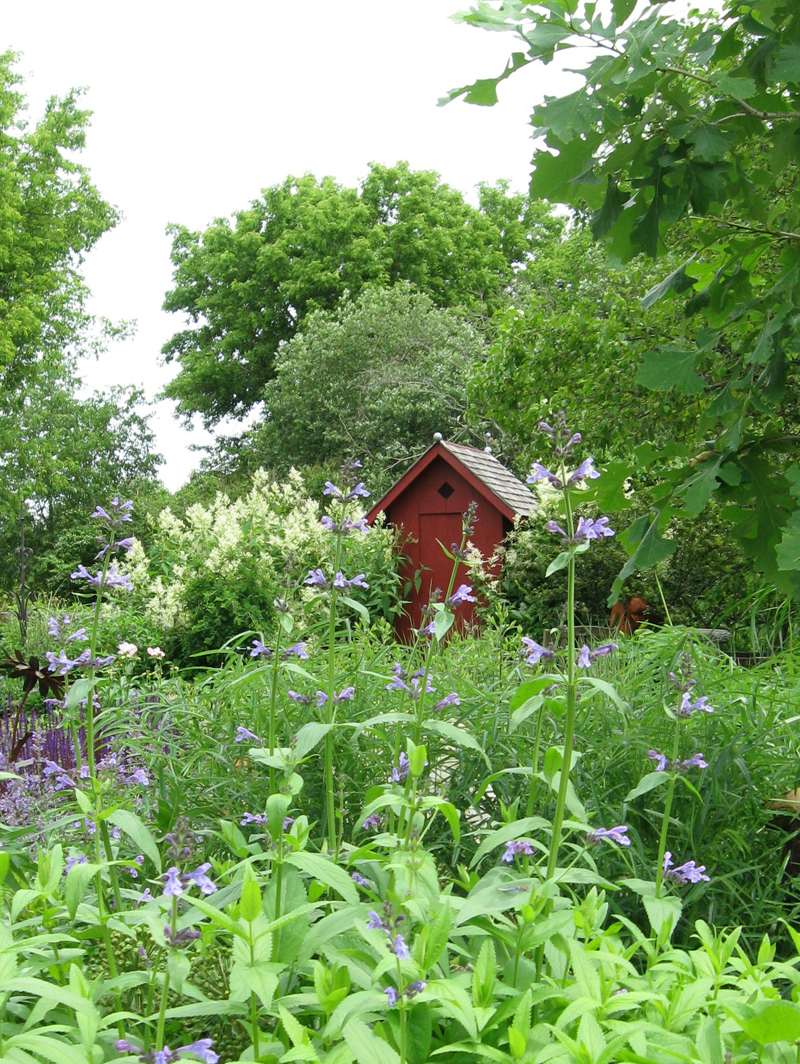 a gorgeous garden and a shed as cute as it can be