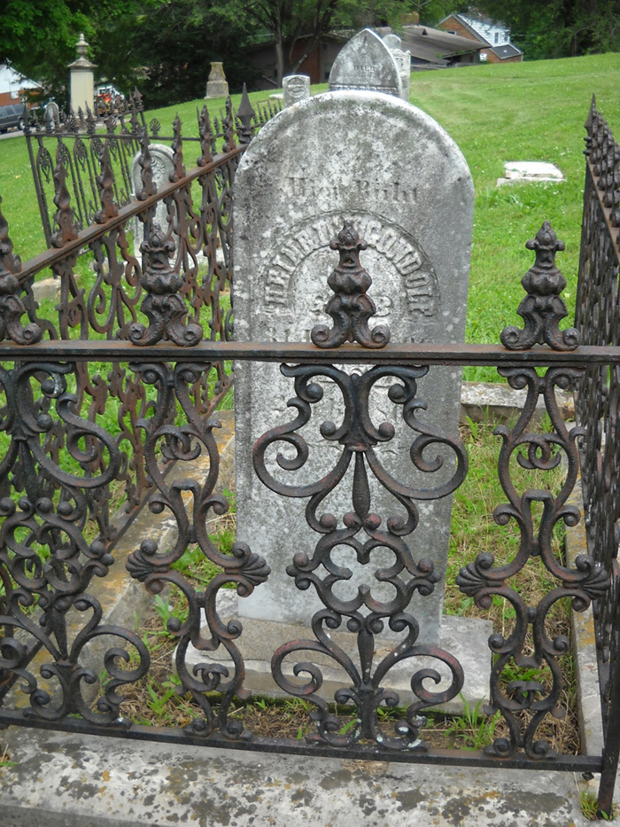 a gorgeous iron fence