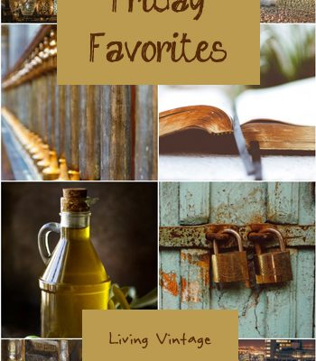 Friday Favorites #151