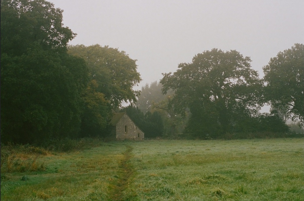 a tiny church nestled in the woods on a beautiful misty day